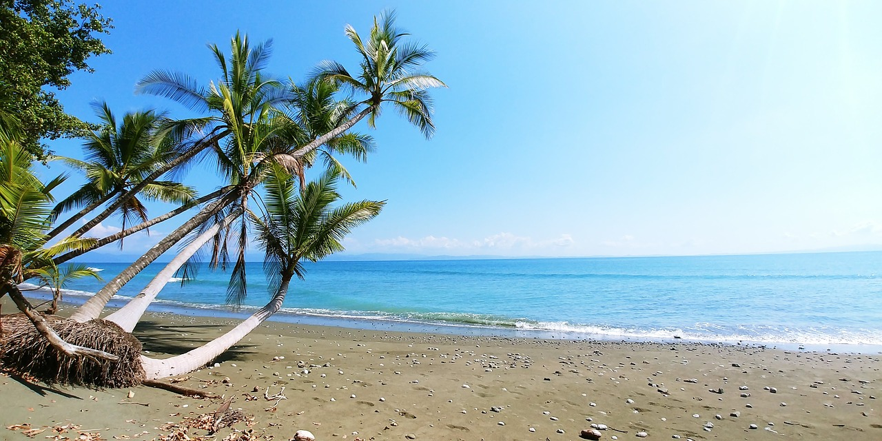 Relax at your own private beach