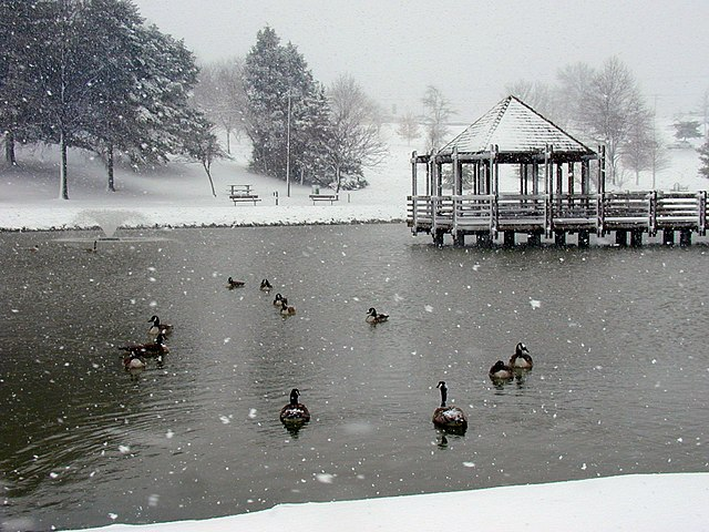 Vlasis_Park,_Ballwin,_Missouri
